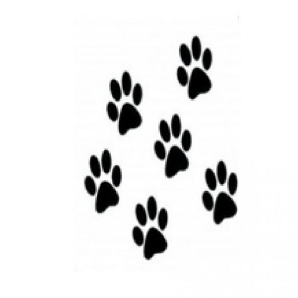 Pegatinas uñas animales 296