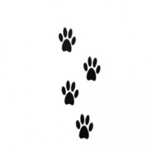 Pegatinas uñas animales 299